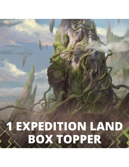 1 expedition land Box Topper en 1 caja de Set Boosters de Zendikar Rising en Magicsur Chile